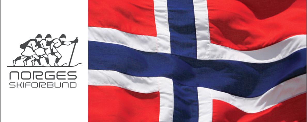 NORGEGIAN SKI LOGO FLAG