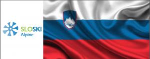 SLOVENIA LOGO FLAG