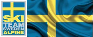 SWSDEN LOGO FLAG
